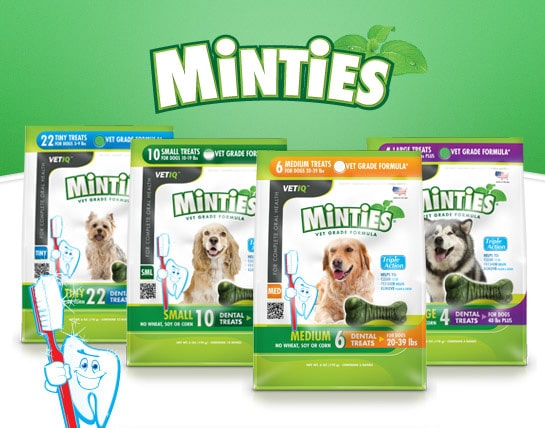 FREE Minties® Dog Treats Sample