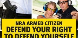 FREE Armed Citizen Bumper Sticker