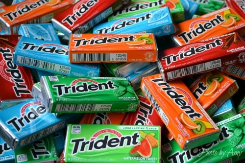 FREE Pack of Trident Gum