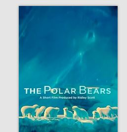 "FREE ""The Polar Bears"" Movie"