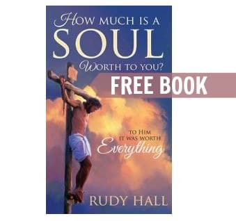 free book how much is a soul worth to you guide2free samples. Black Bedroom Furniture Sets. Home Design Ideas