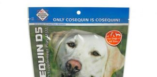 FREE Bag of Cosequin DS Maximum Strength Plus MSM and Boswellia Soft Chews