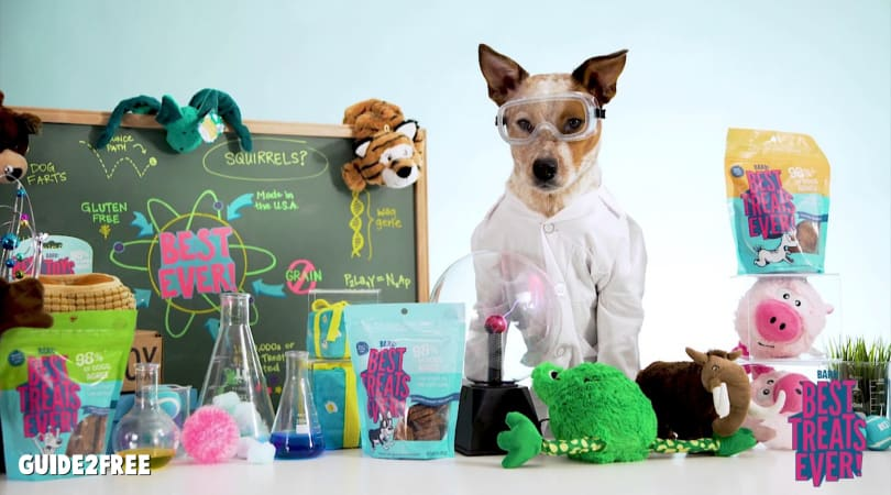 Become a Beta Tester for Barkbox