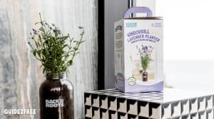 FREE Windowsill Lavender Planter
